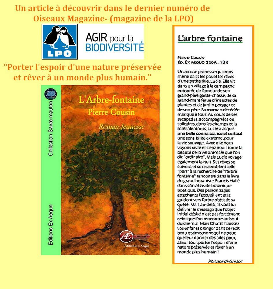 article arbre fontaine
