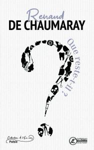 Que-reste-t-il-par-Renaud-De-Chamaray-aux-Éditions-Ex-Æquo